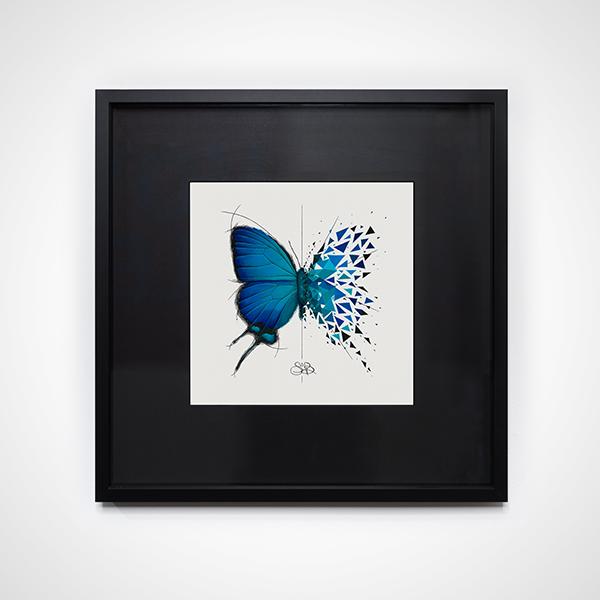 Effet Papillon Image