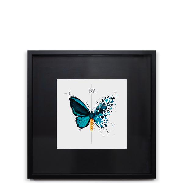 Effet Papillon Euphor Image