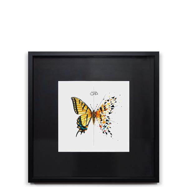 Effet Papillon Glau Image