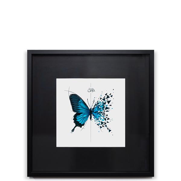 Effet Papillon Ulyss Image