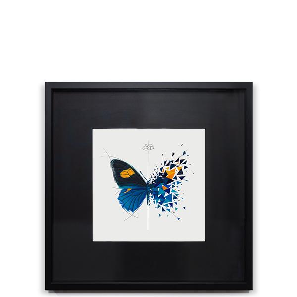 Effet Papillon Belus Image